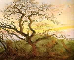 Caspar David Friedrich - Nature 1897
