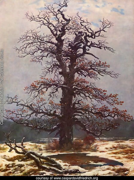 Oak in the Snow 1820s